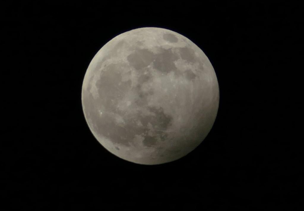 2020-01-10 06 Wolf moon