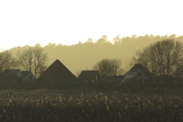 2020-03-20 04 Kleimeer