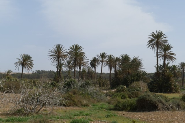 Marokko 2020-02 117