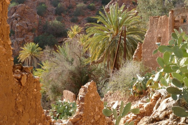 Marokko 2020-02 38