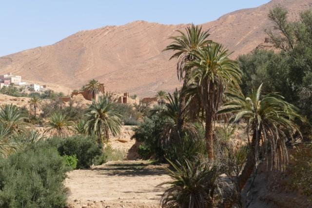 Marokko 2020-02 45