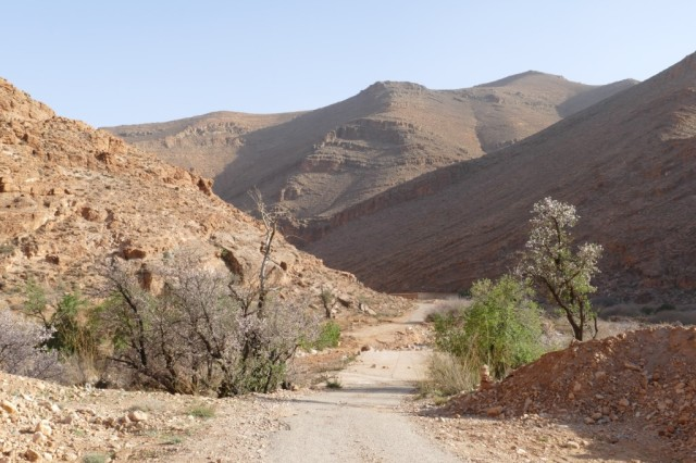 Marokko 2020-02 79