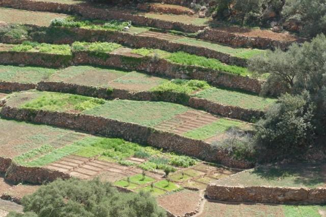 Marokko 2020-02 87