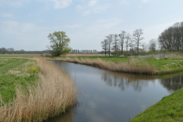 2020-04-12 05 Kleimeer